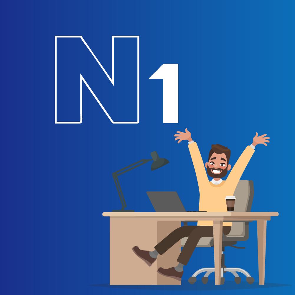 sistema n1