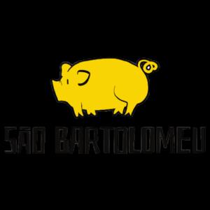 saobartolomeu-removebg-preview
